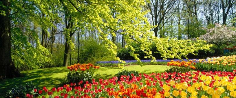 parco fiori