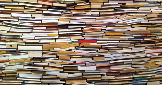 muro-di-libri